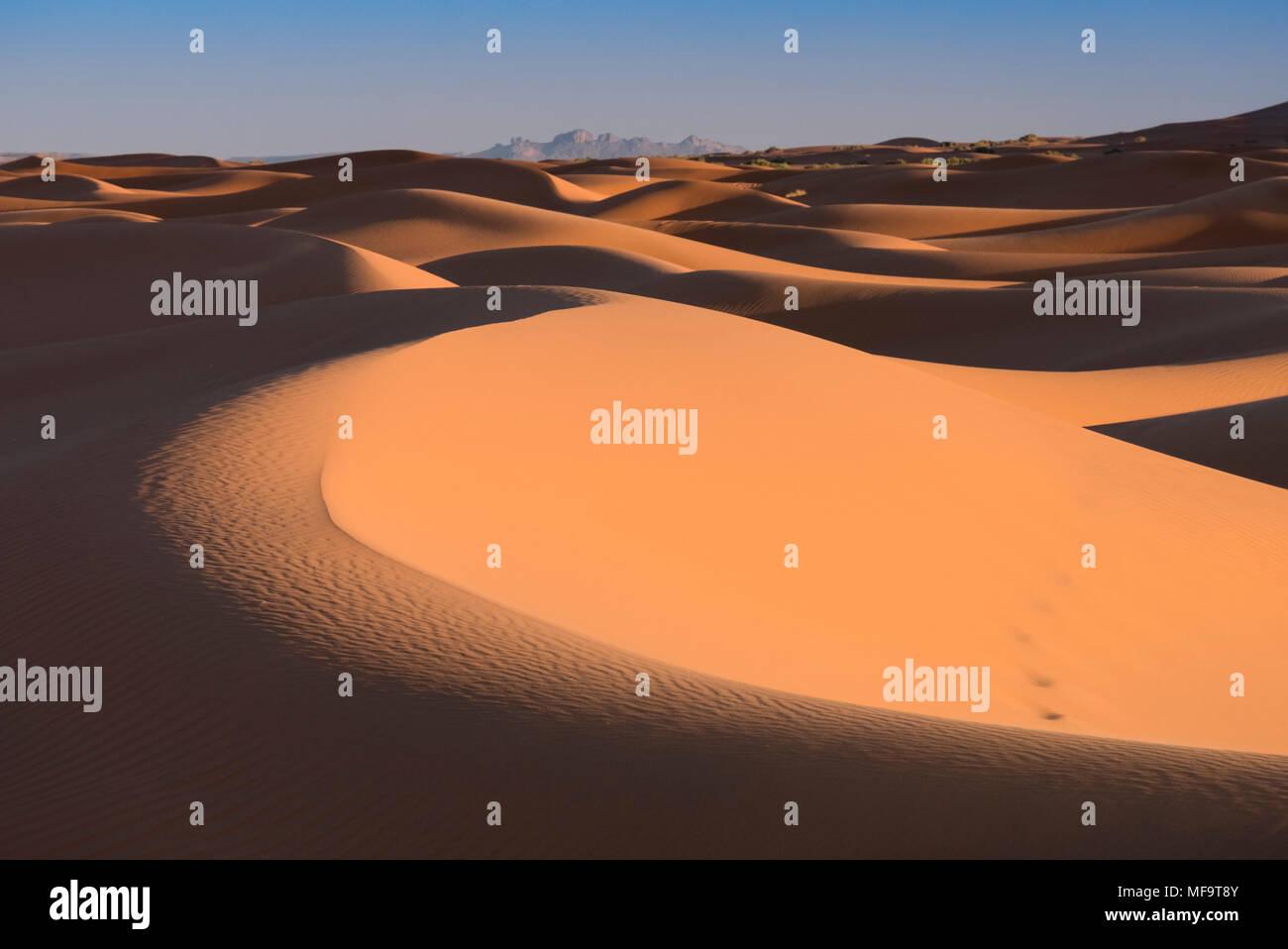 Mare di sabbia, Erg Chebbi dune del deserto, Sahara Occidentale, Marocco Immagini Stock