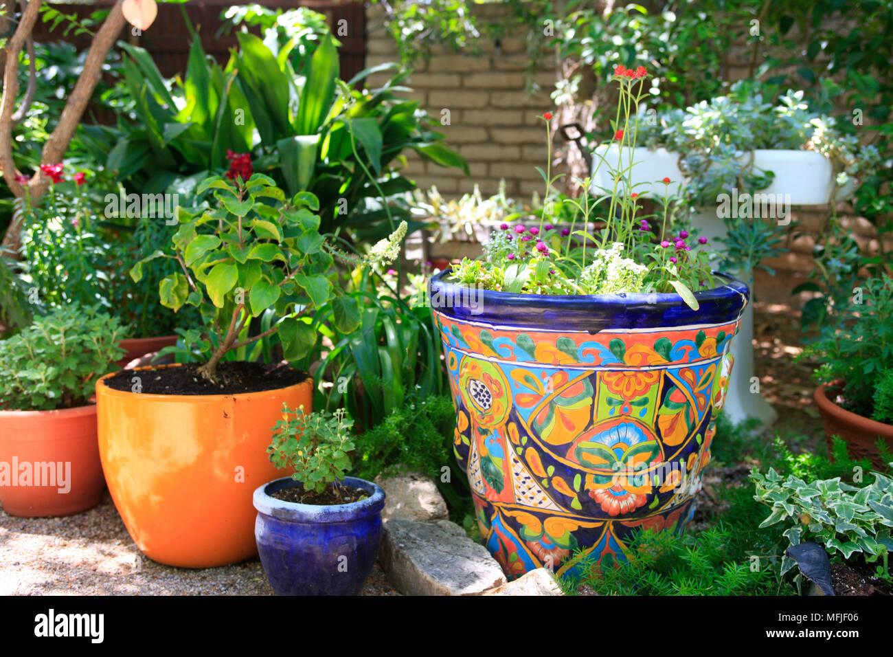 Decorazione Vasi Da Giardino : Bellissimi vasi da fiori e decorazioni floreali in un barrio