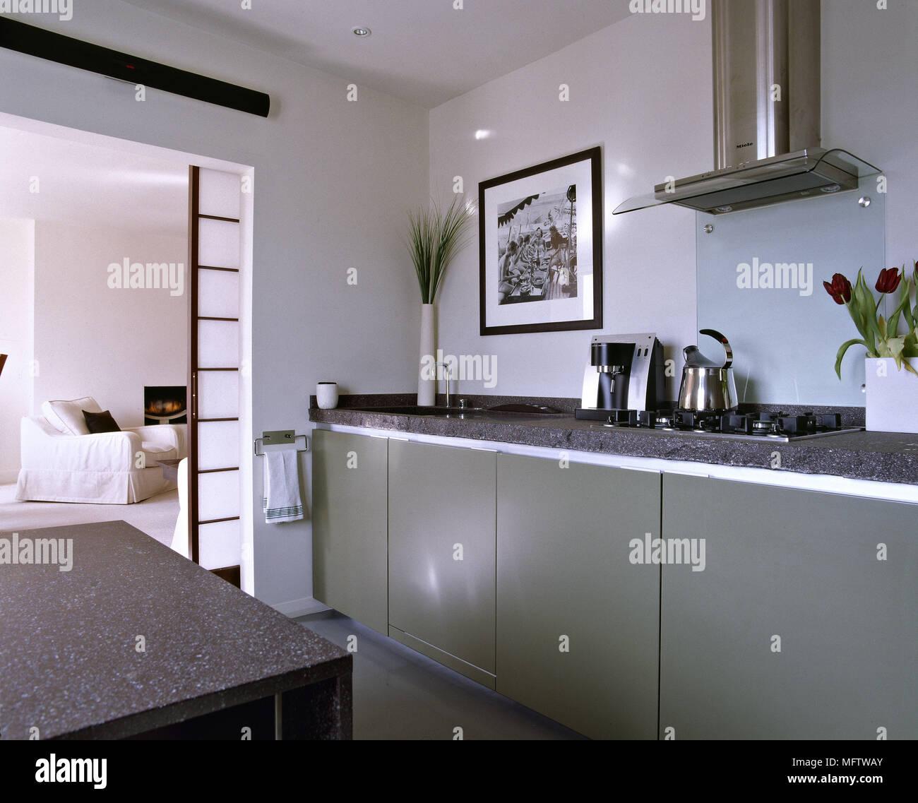 Una moderna cucina verde granito alto lavoro cappa aspirante da ...