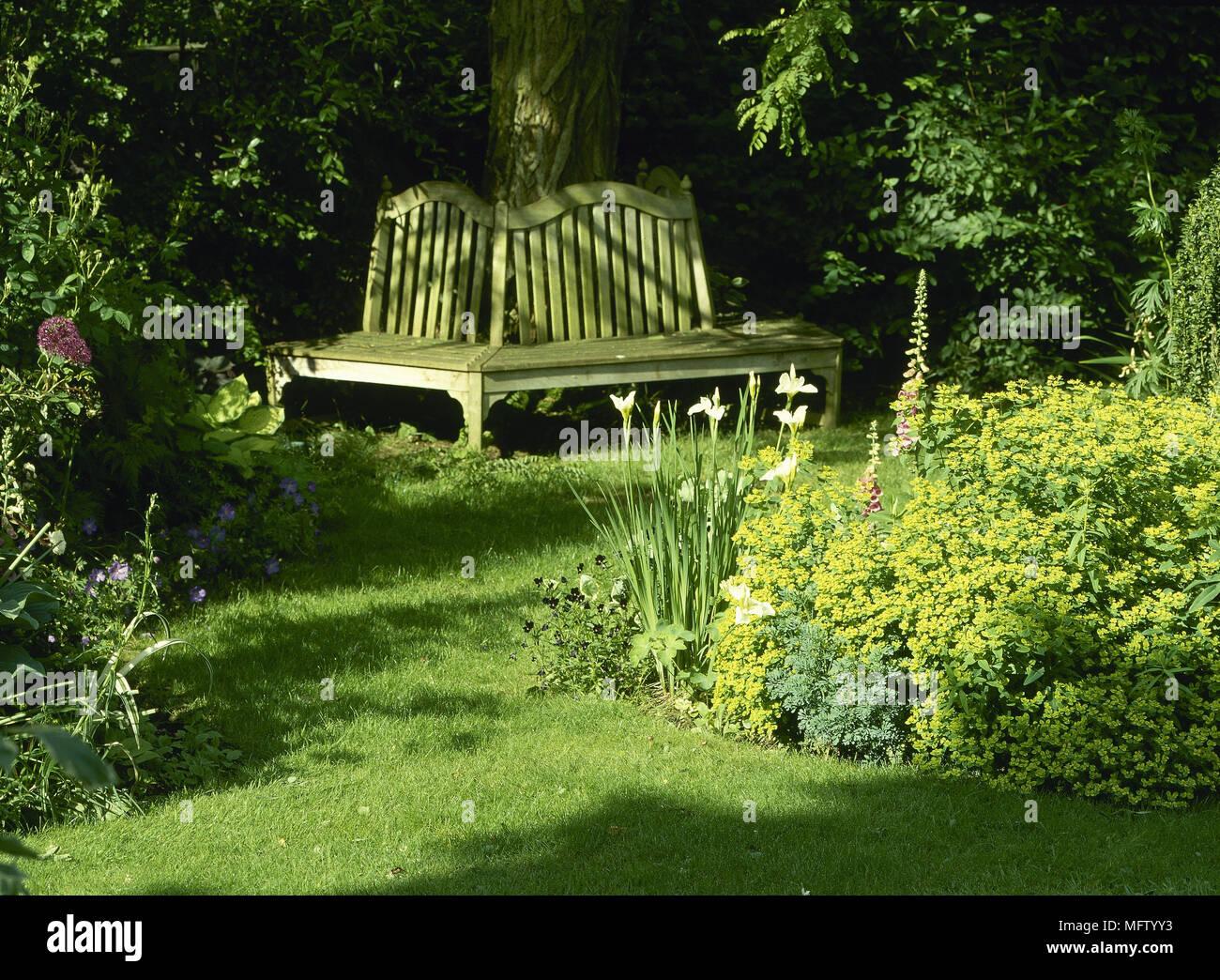 Panchina da giardino intorno tree aiuole dettaglio giardini