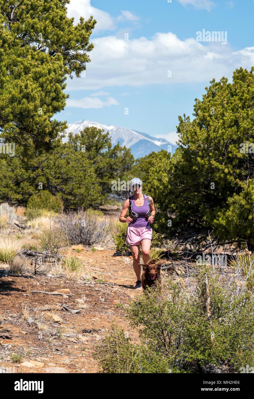 Sentiero femmina runner con il suo cane; po rainbow Trail vicino Salida; Colorado; USA Immagini Stock