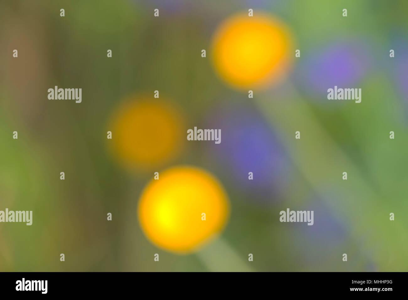 Sfondo giallo e viola