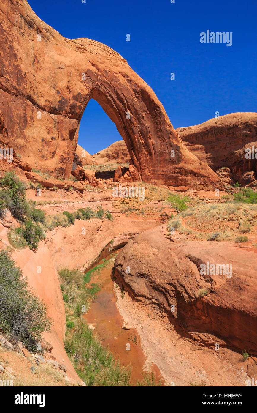 Arco spezzato arch in Glen Canyon National Recreation Area vicino a Escalante, Utah Immagini Stock