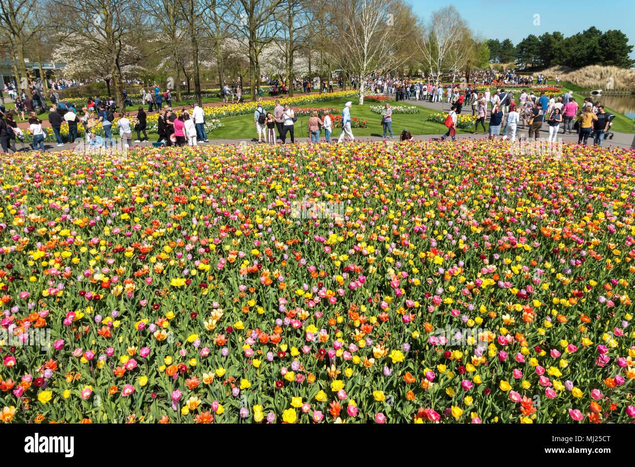 Immagini di giardini fioriti viewinvite co - Immagini di giardini fioriti ...