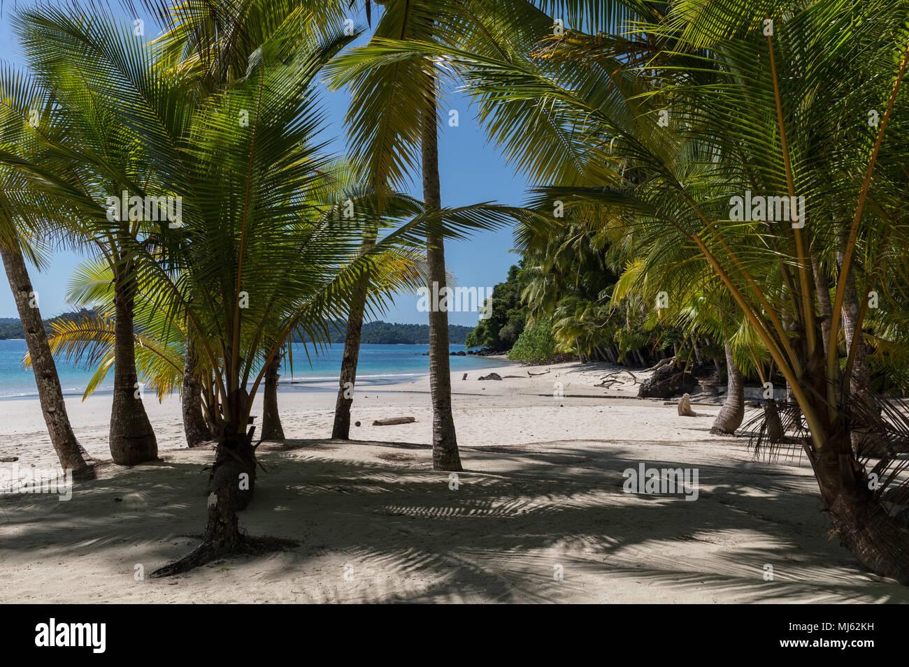 Parco Nazionale di Coiba, situato Golfo di Chiriqui, Panama, Centroamerica Immagini Stock