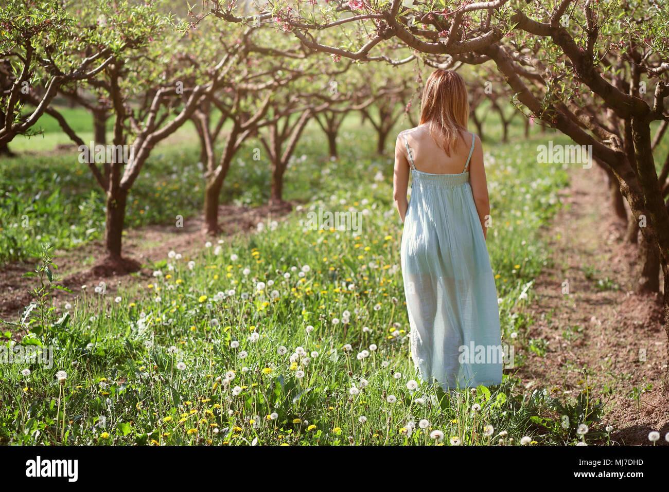 Donna che cammina in un frutteto. La pace e l armonia Foto Stock