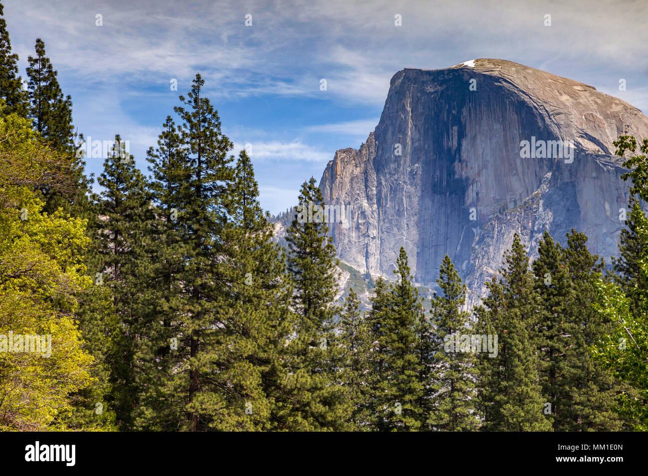Half Dome, Yosemite National Park, California, Stati Uniti d'America,mountain,Duomo,parco nazionale Yosemite,,Californian,l'america,american,alberi,landscape,paesaggi,New Scenic 5 posti Immagini Stock