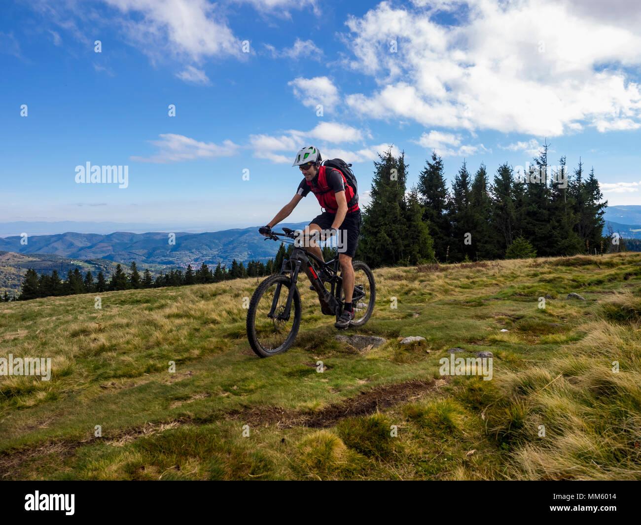 Mountain Biker ciclismo su single trail su Ringelbuhlkopf, Alsazia, Francia Immagini Stock