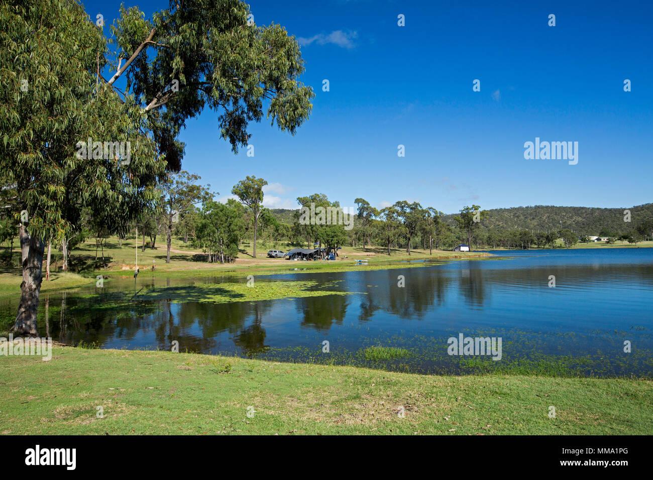 Paesaggio colorato con calme acque blu della diga Eungalla orlata da emerald erba e alberi di ombreggiatura sotto il cielo blu con camper sulla banca distanti Qld Aust Immagini Stock