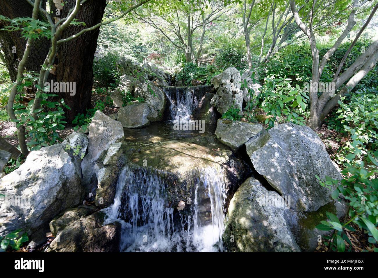 Una cascata del giardino giapponese orto botanico di roma o a