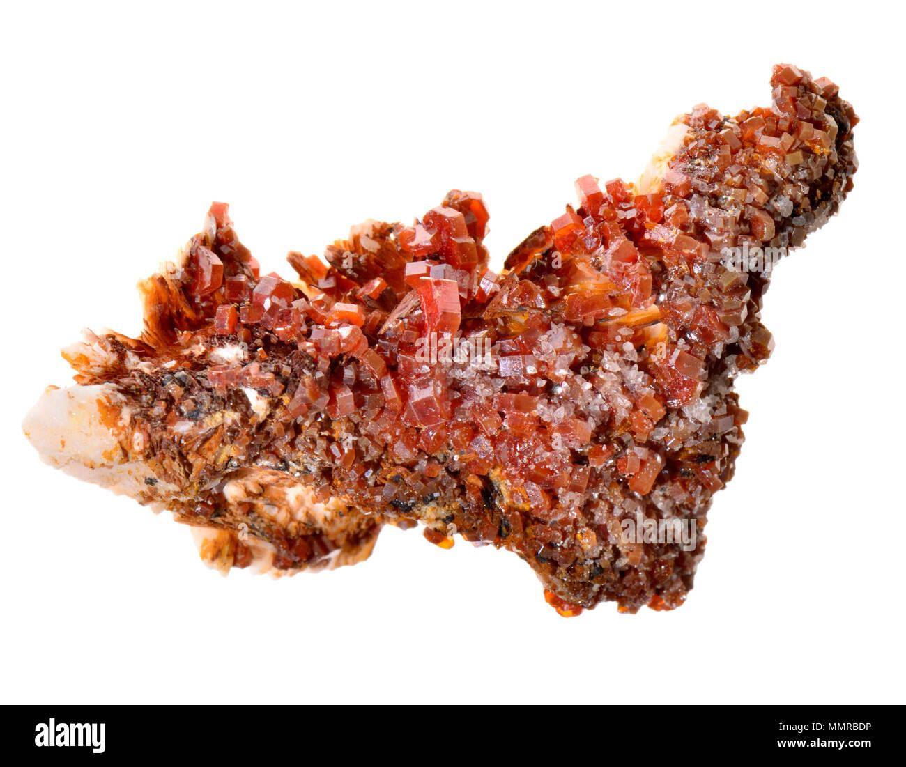 Vanadinite rosso (cristalli di vanadato e cloruro di piombo) Immagini Stock