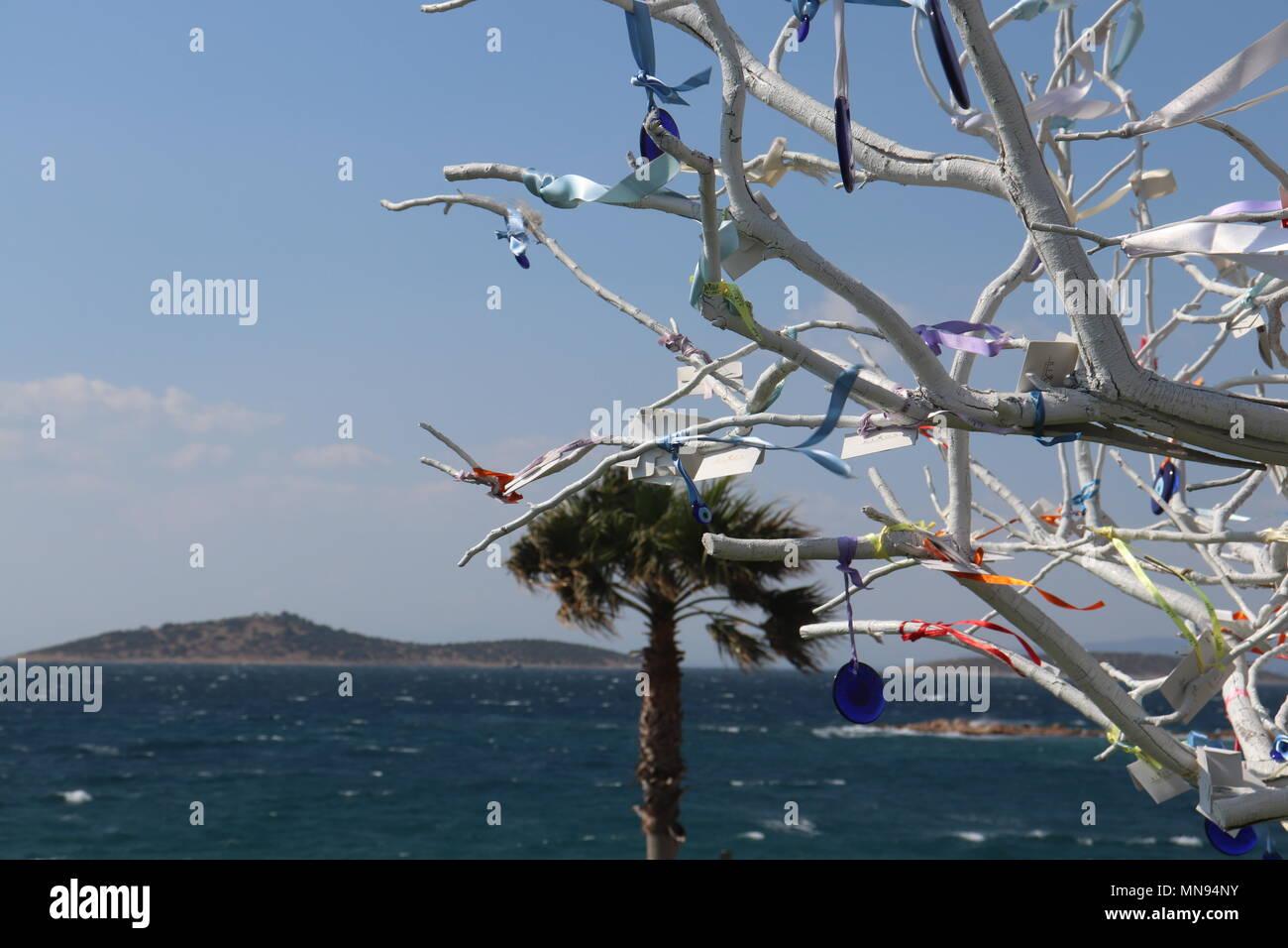 Aegean Sea view ,diavolo occhio albero bianco Bodurm Turchia Immagini Stock