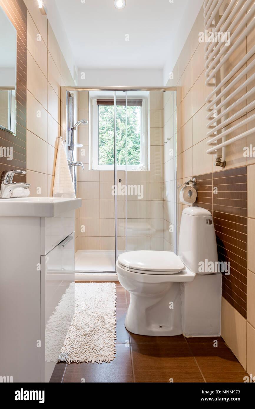Piccolo bagno interno in marrone con finestra, wc, doccia e lavabo ...