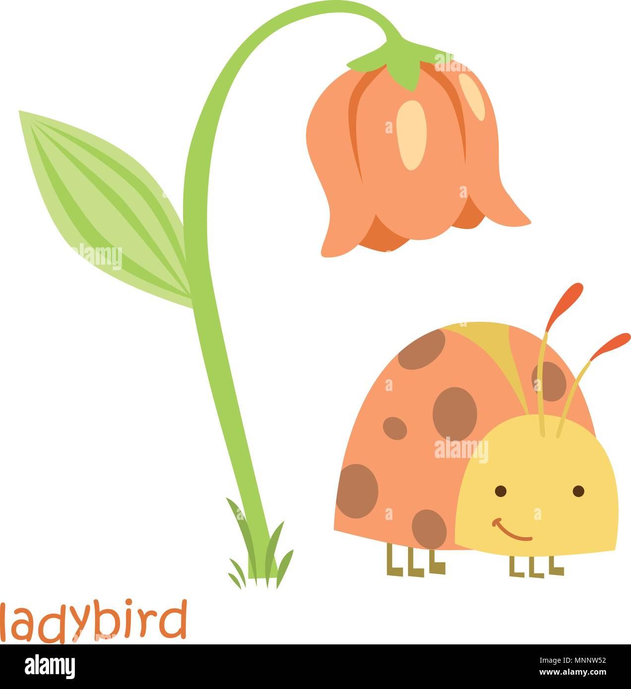 Ladybug Isolato Disegno Coccinella Per Un Bambino Illustrazione