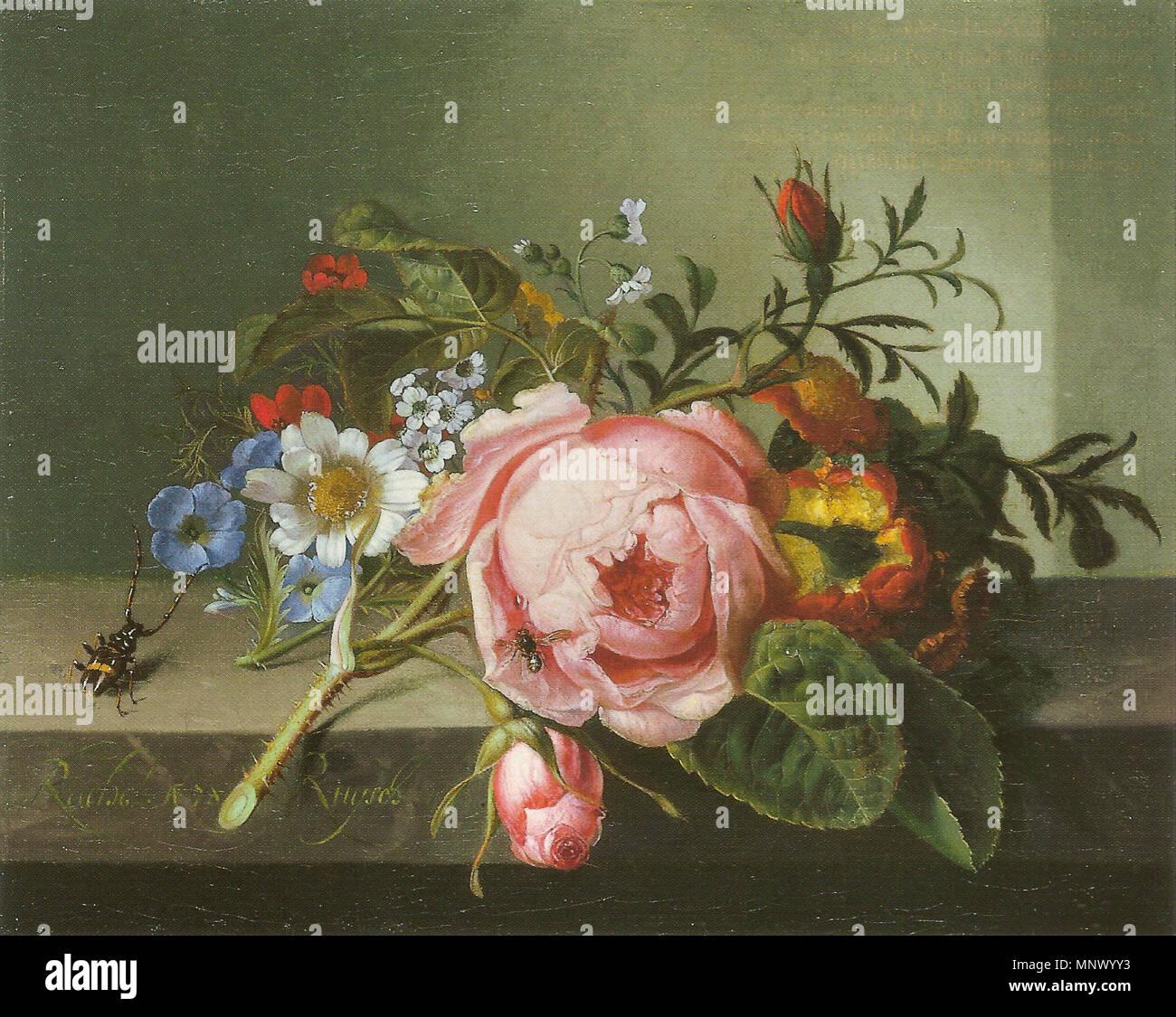1080 Ruysch, Rachele - Rosenzweig mit Käfer und Biene - 1741 Foto Stock