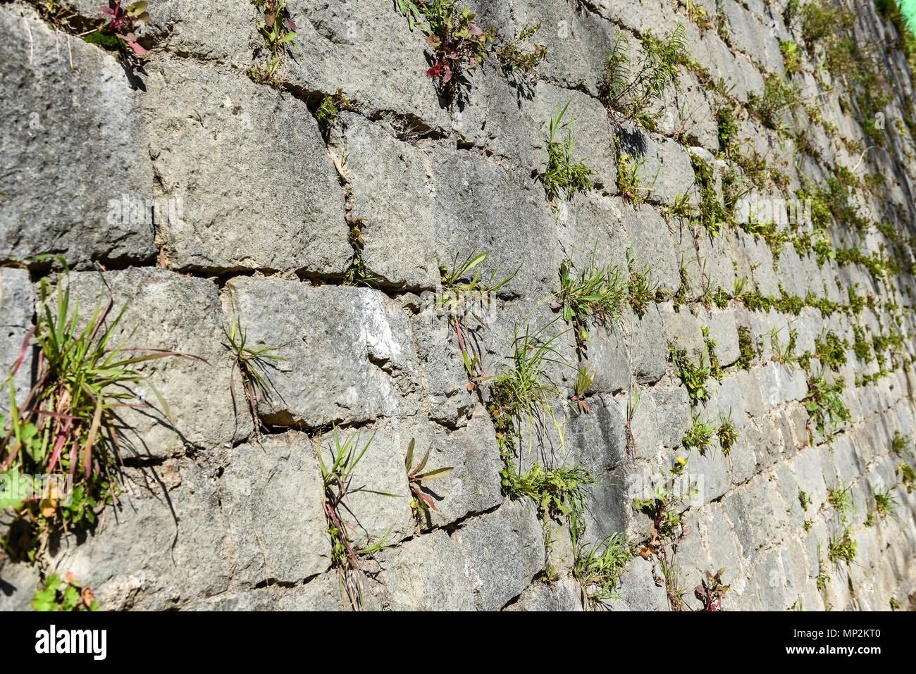 Muro Fatto In Pietra il vecchio castello in pietra muro fatto di mattoni di