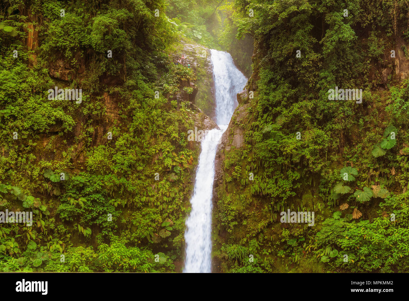La Paz è una cascata in Costa Rica centrale.it è noto come Catarata de La Paz. Si tratta di 31 chilometri a nord di Alajuela, tra Vara Blanca e accenni di china Immagini Stock