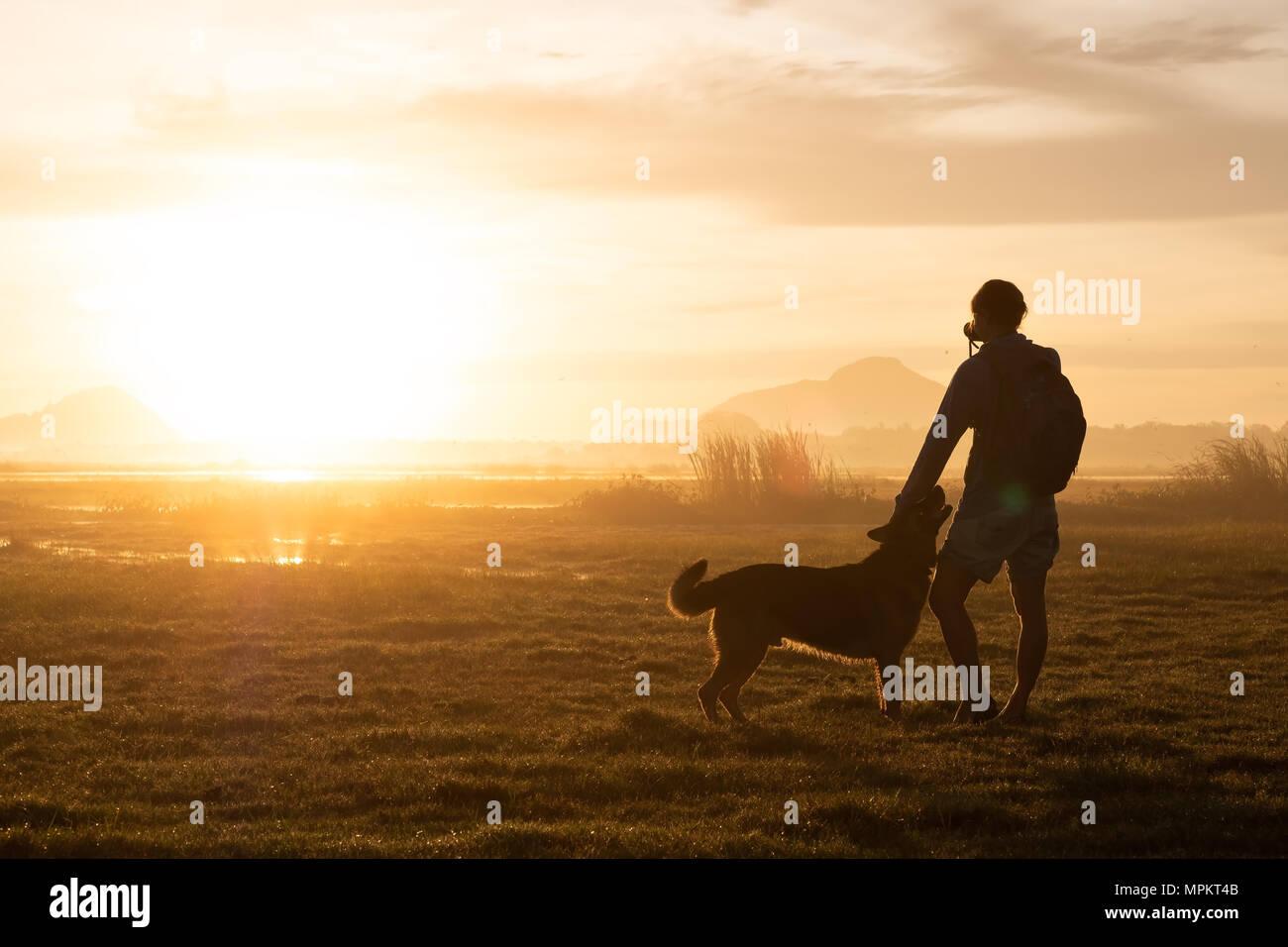 Silhouette di donna e cane a camminare su sfondo al tramonto. Immagini Stock