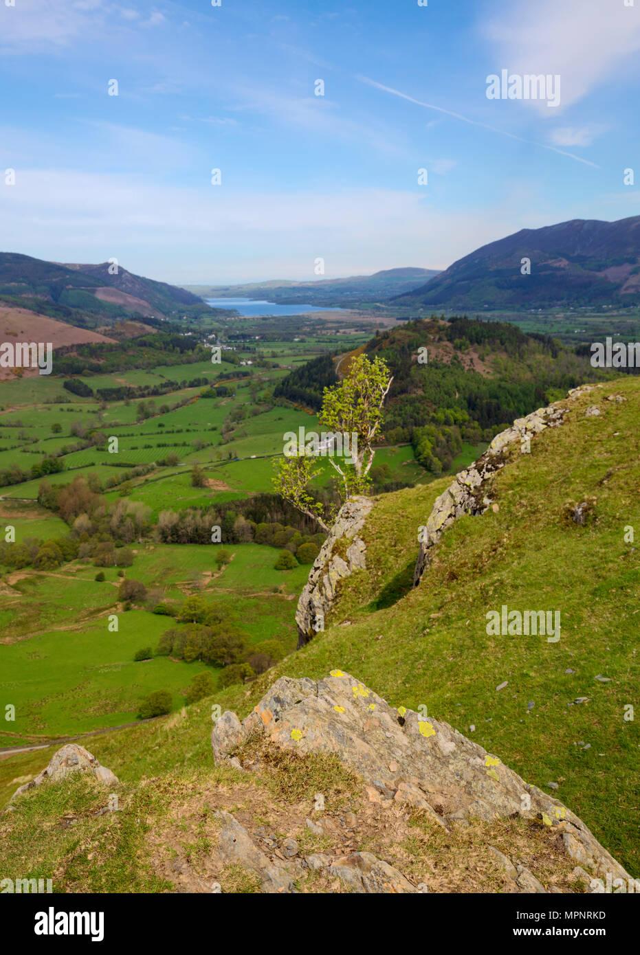 Guardando verso il basso dalla Catbells oltre il Newlands Valley nel Lake District in Cumbria Immagini Stock