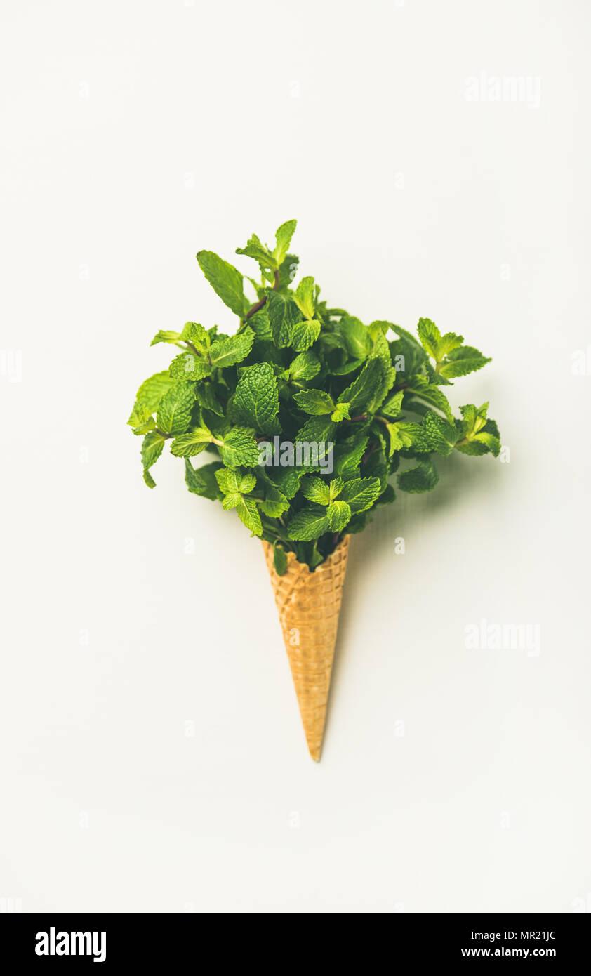 Cono di cialda con foglie di menta fresca su sfondo bianco Immagini Stock