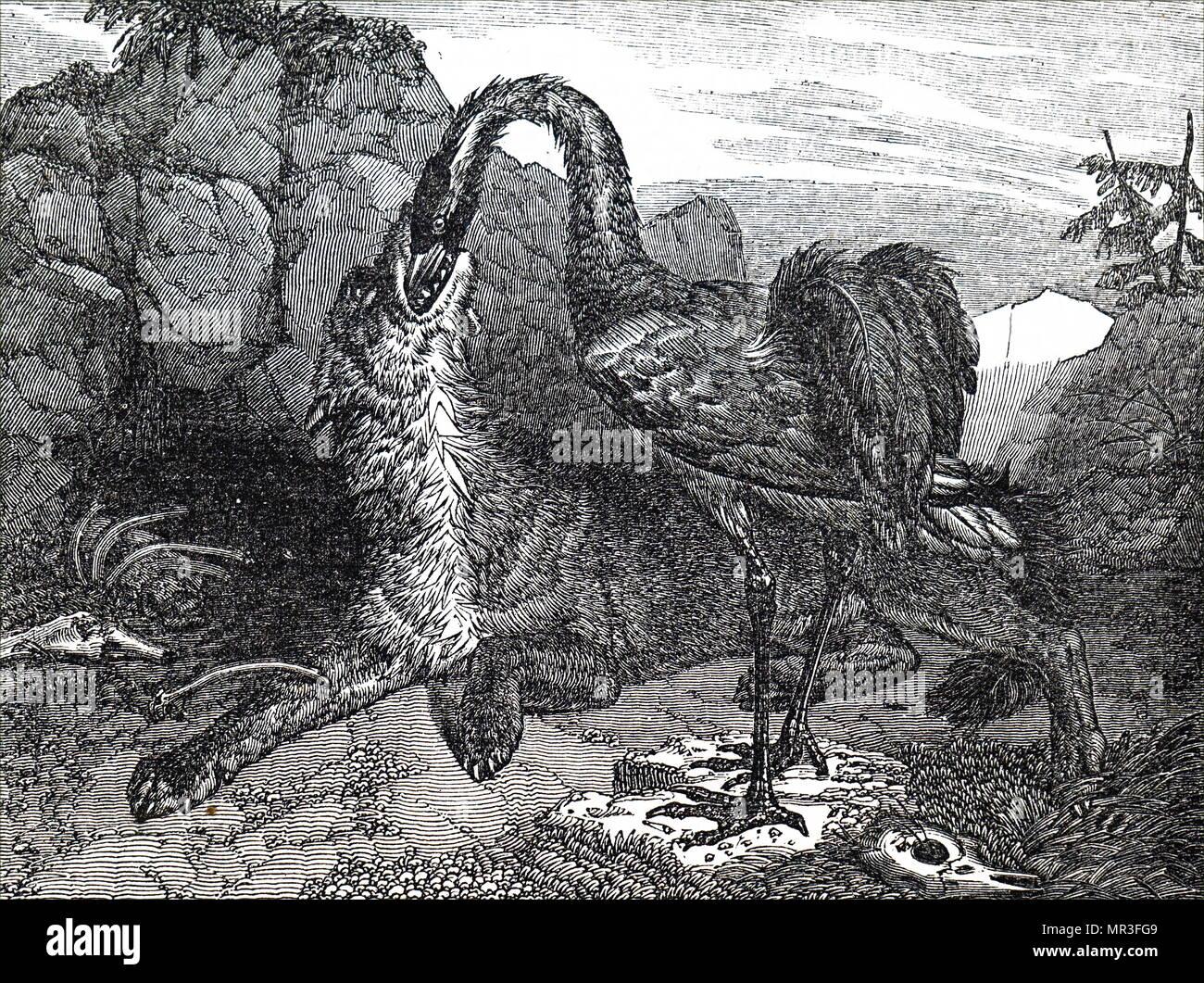 Illustrazione raffigurante un lupo e una gru da George Cruikshank. George  Cruikshank (1792- a181cb6c0264