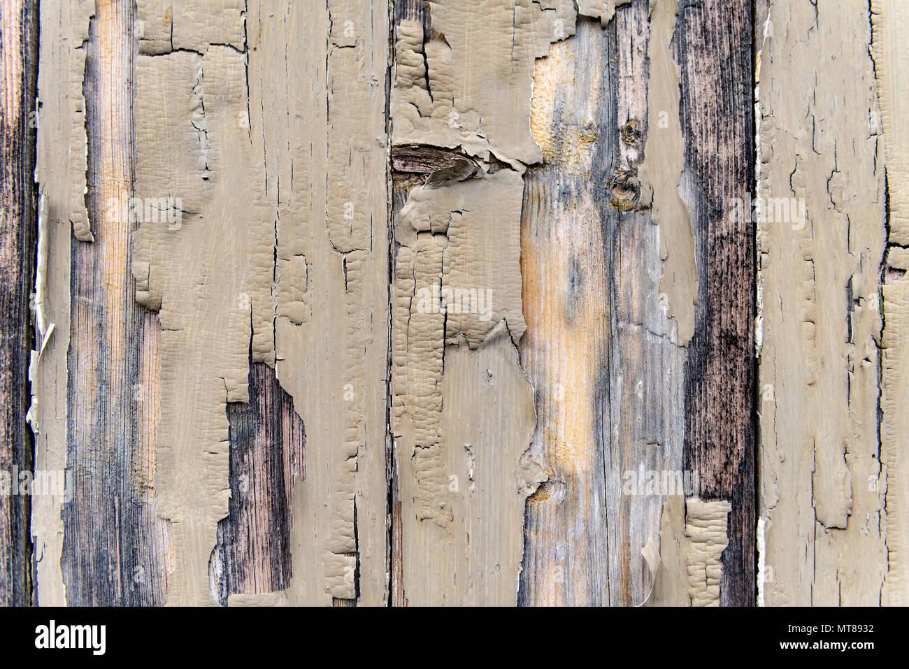 La pelatura di vernice sul legno invecchiato Immagini Stock