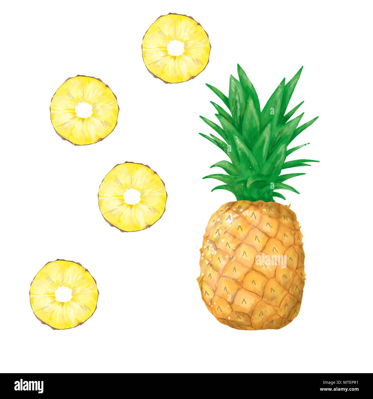 Ananas clipart frutta intera estate digital fresco tropicale frutto giallo su sfondo bianco Immagini Stock