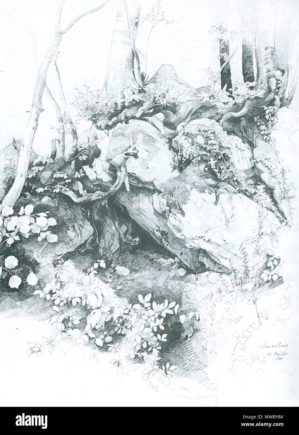 . Deutsch: Edmund Kanoldt: Vordergrundstudie, Schauenburg. 50,5 × 35,9 cm. Bleistift auf Papier. La Kunsthalle di Mannheim . circa 1886. Edmund Kanoldt (1845-1904) 177 Edmund Kanoldt Vordergrundstudie Schauenburg Immagini Stock