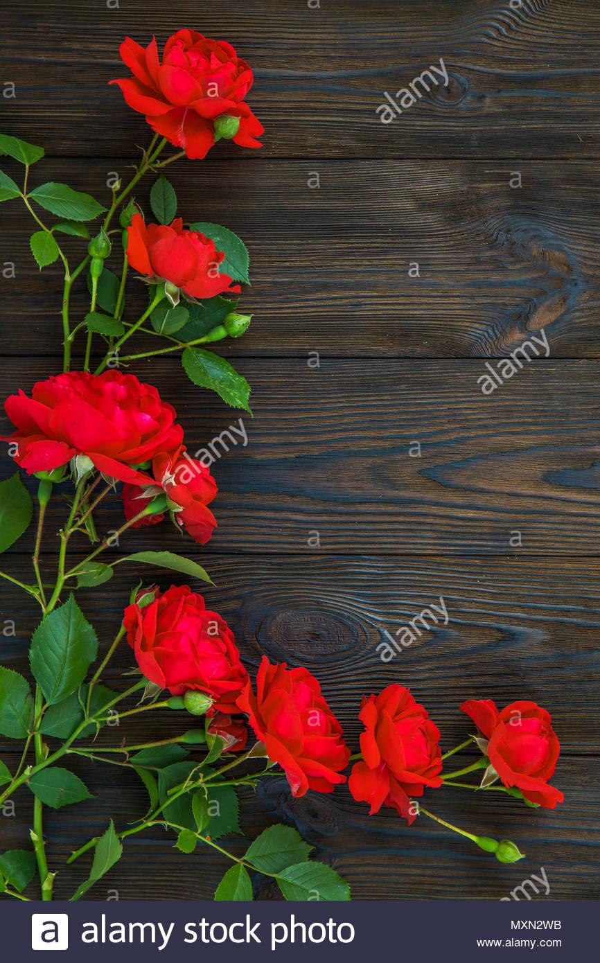 Sfondo Romantico Con Una Rosa Rossa Sulla Tavola Di Legno Vista