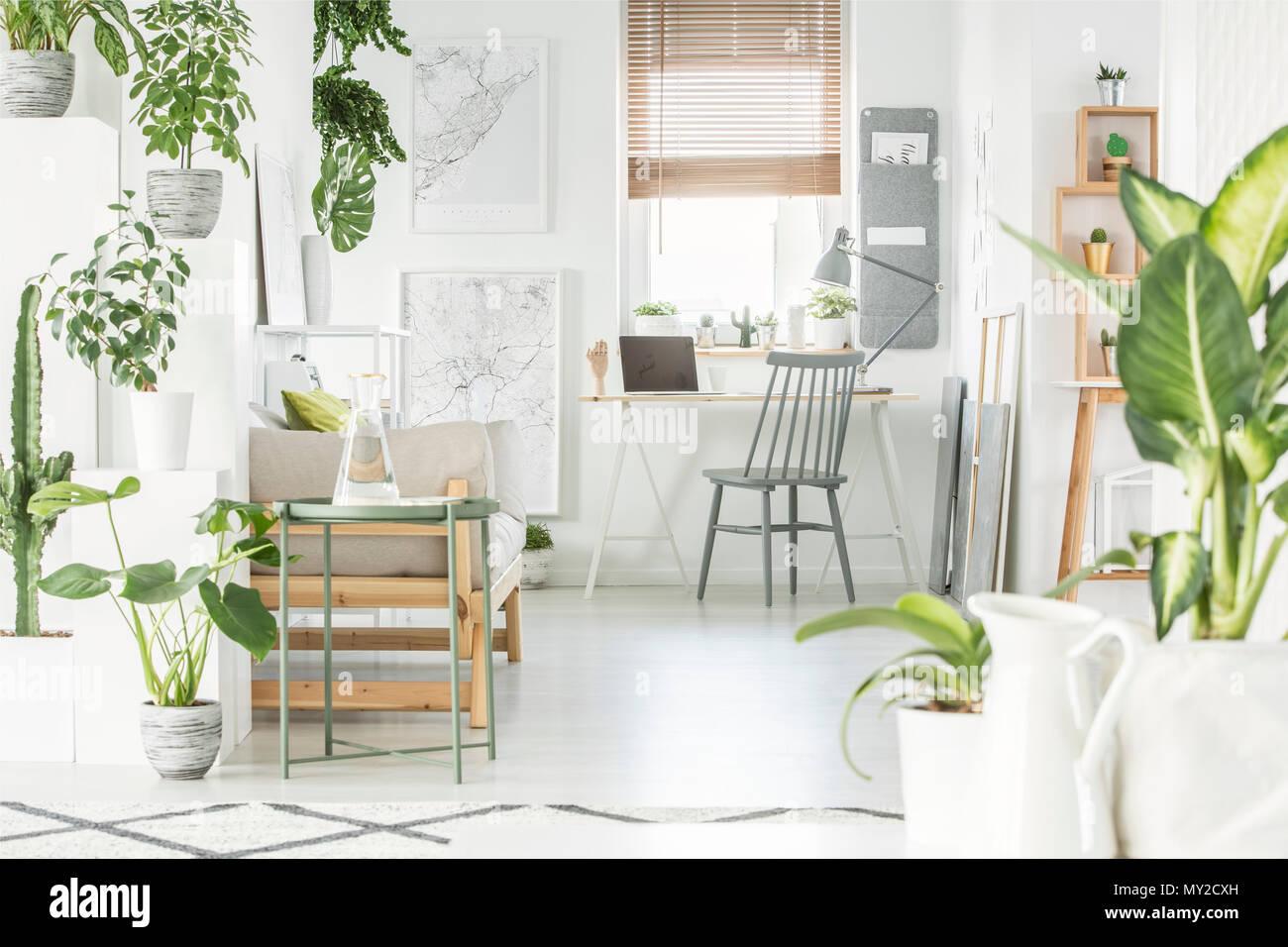 Scrivania Ufficio Grigio : Casa bianca di ufficio interno con fresche piante verdi grigio