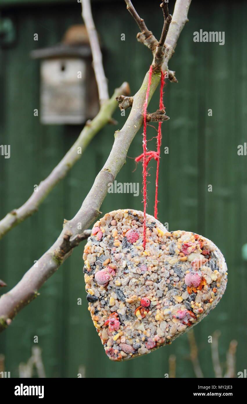 Finestra Di Grasso Sfera Mangiatoia Garden bird visualizzazione tabella finestra Bird Grasso Sfera Mangiatoia UK