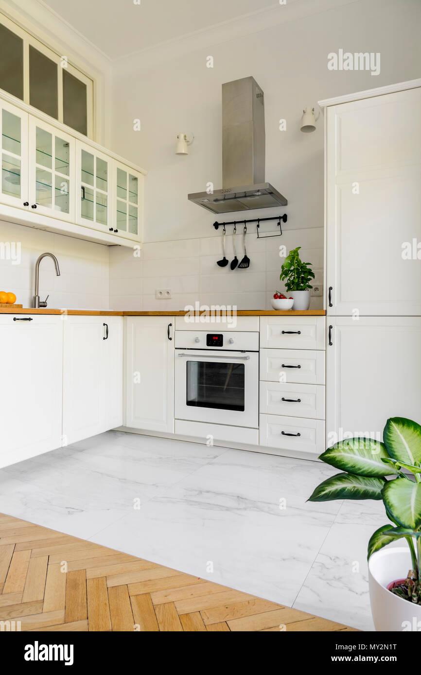 Stabilimento di semplice cucina bianca interno con argento cappa ...