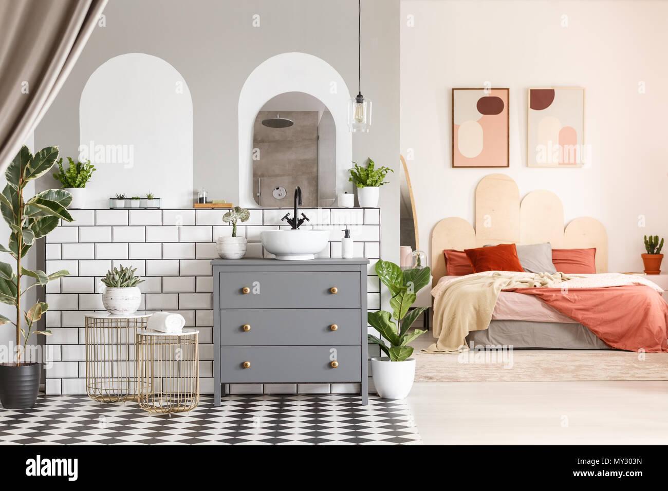 Bagno Aperto In Camera : Le piante accanto al cabinet grigio in spazio aperto interno