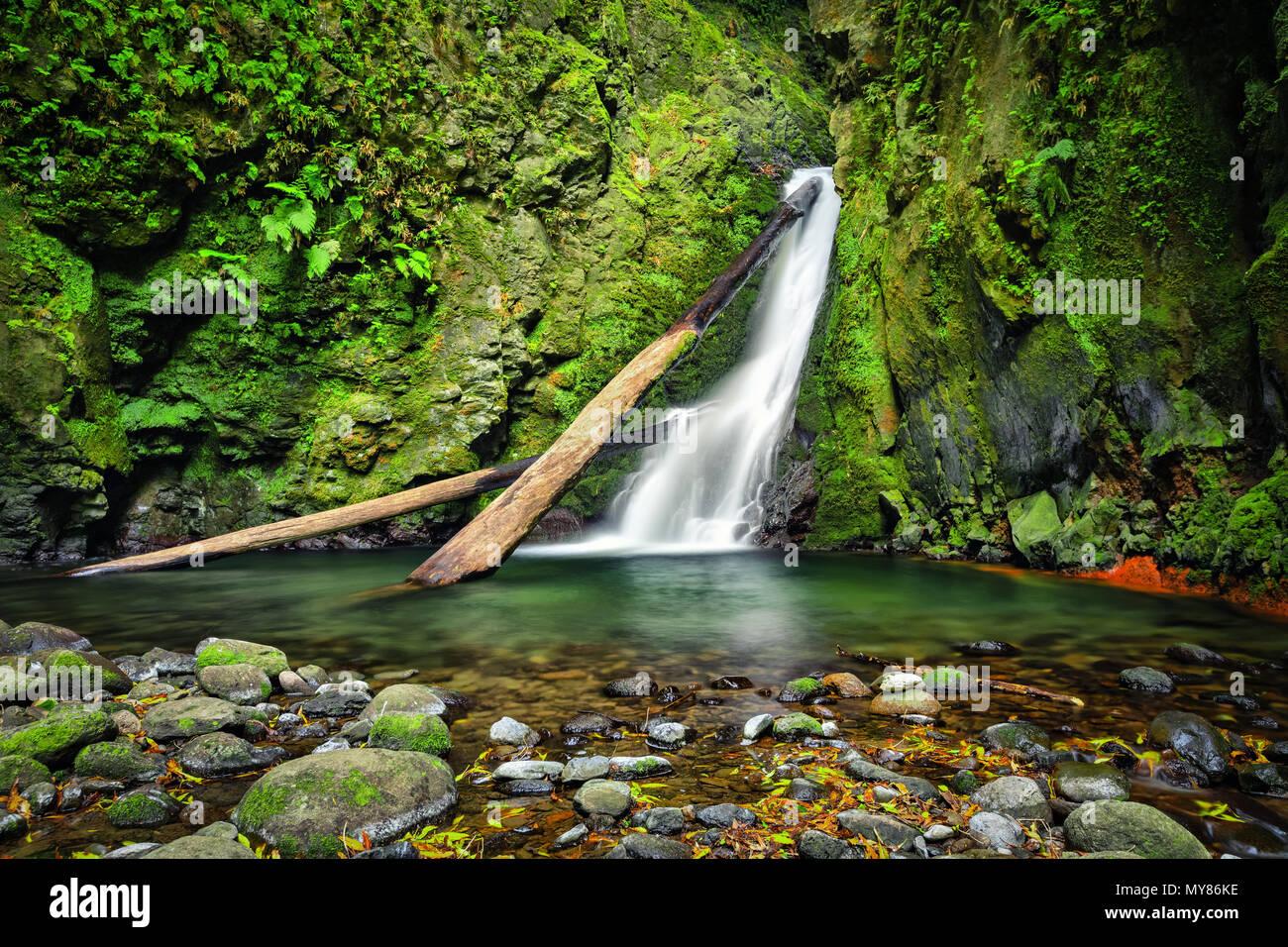 Salto fare Cagarrao cascata situata sul fiume Prego, isola Sao Miguel, Azzorre, Portogallo Immagini Stock