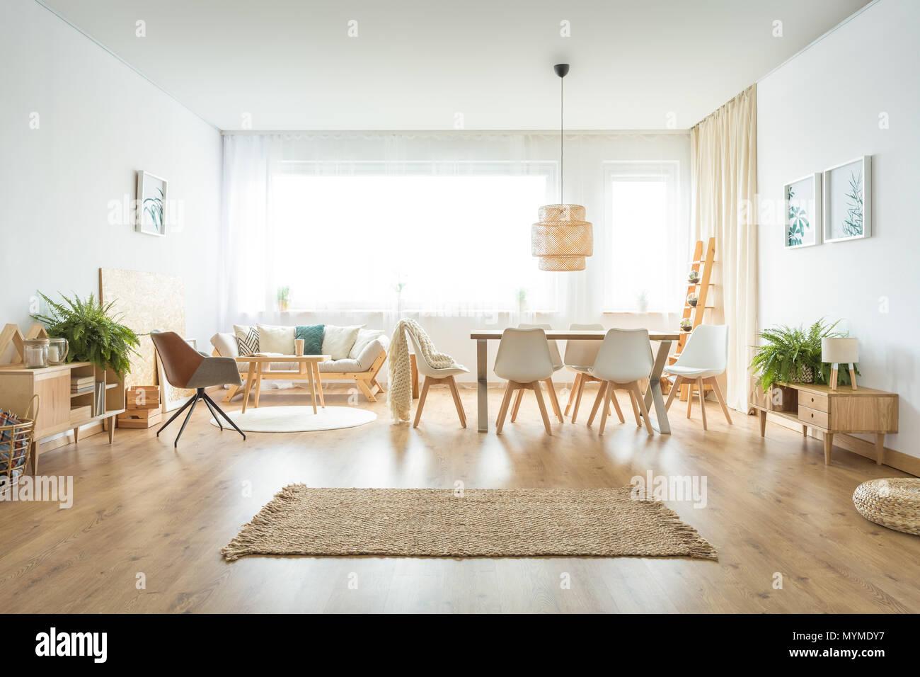 Tappeto marrone e armadi in legno di felci in uno spazioso ...