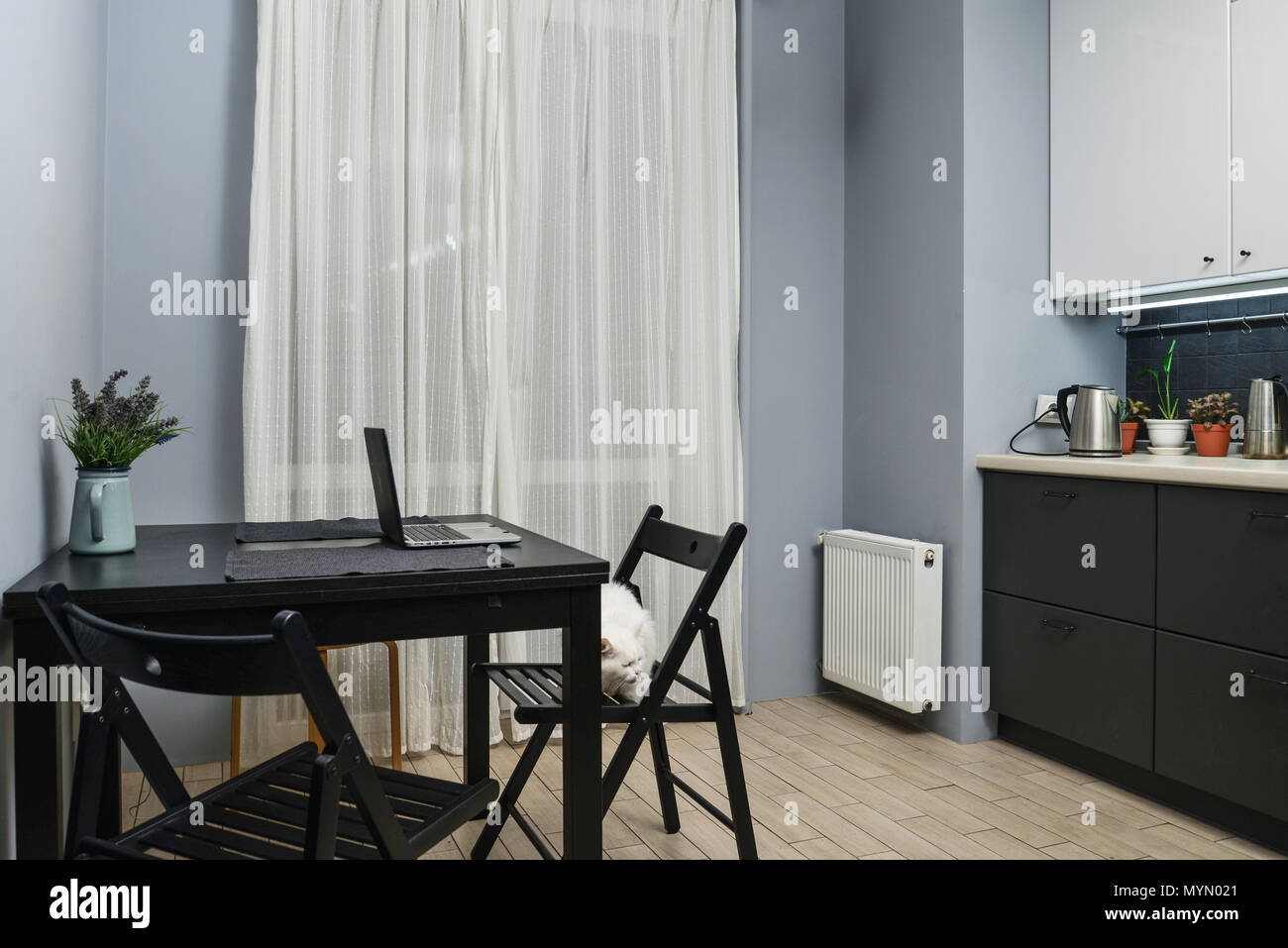 Interno della cucina in stile moderno con bianco e grigio e ...