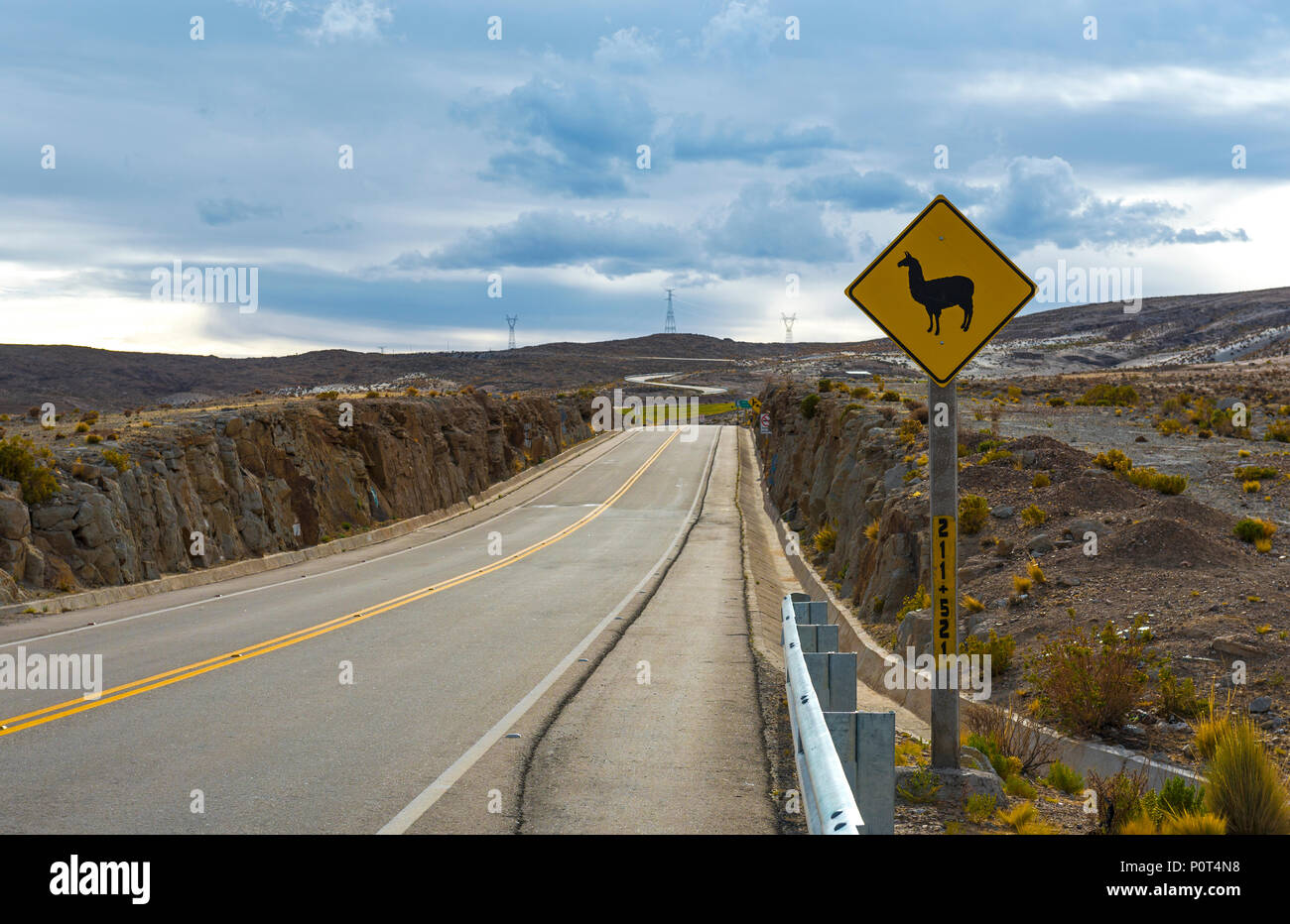 Di lama e alpaca sul cartello stradale su un telecomando in autostrada in Bolivia. Questi segni sono trovati nella Cordigliera delle Ande della Bolivia, Ecuador, Perù e Cile. Immagini Stock