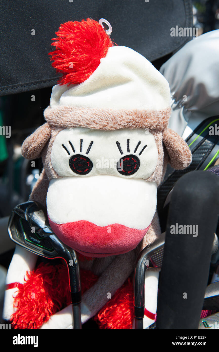 Golf club headcover in rappresentanza di una scimmia. Immagini Stock