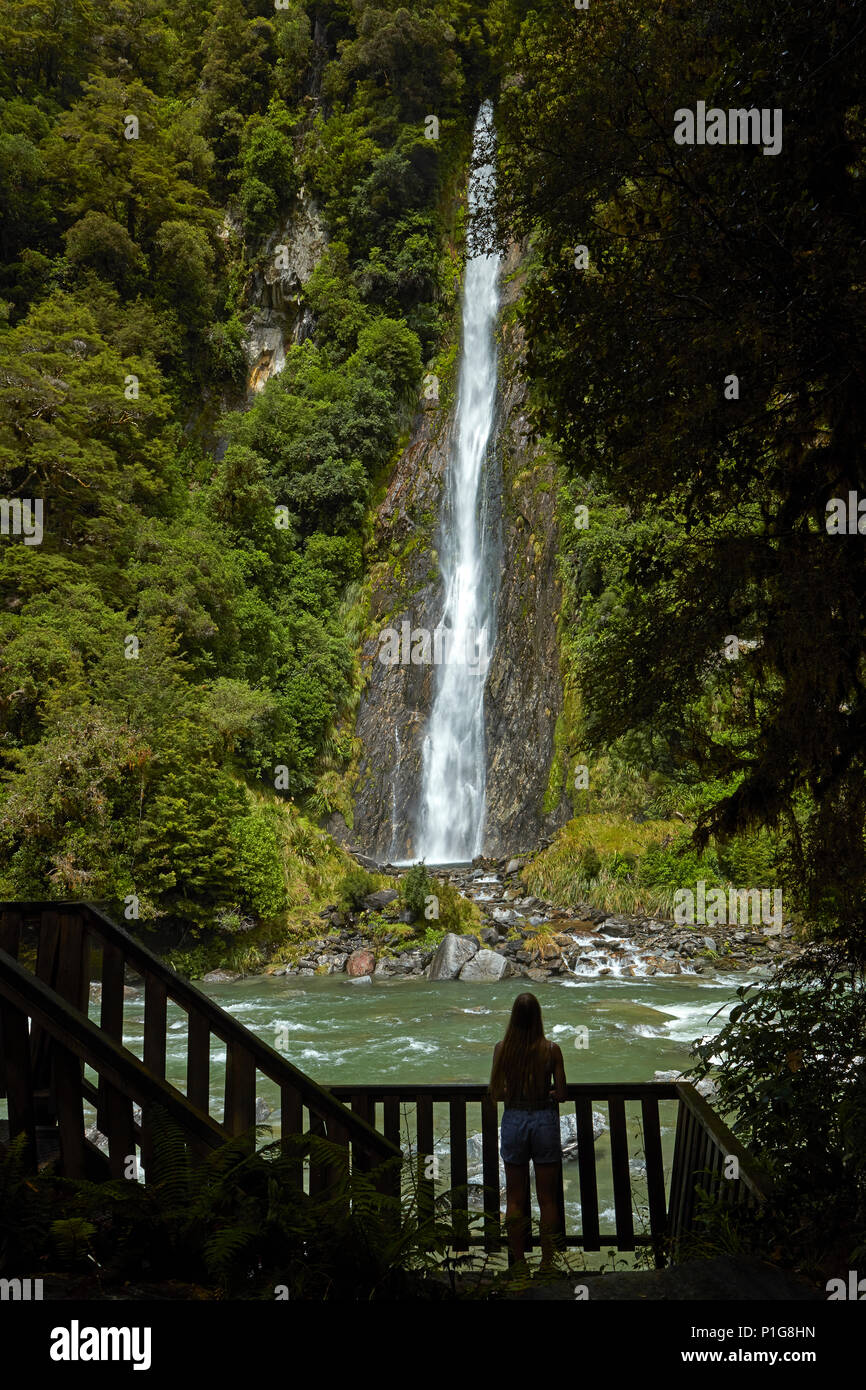 Tourist, Thunder Creek Falls & Haast River, Haast Pass, Mt Aspiring National Park, West Coast, Isola del Sud, Nuova Zelanda (modello rilasciato) Immagini Stock