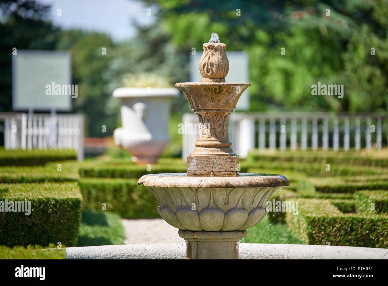 Giardino Botanico Di Seana Secolo Xix La Slovenia A Anni Vecchio Cedro.