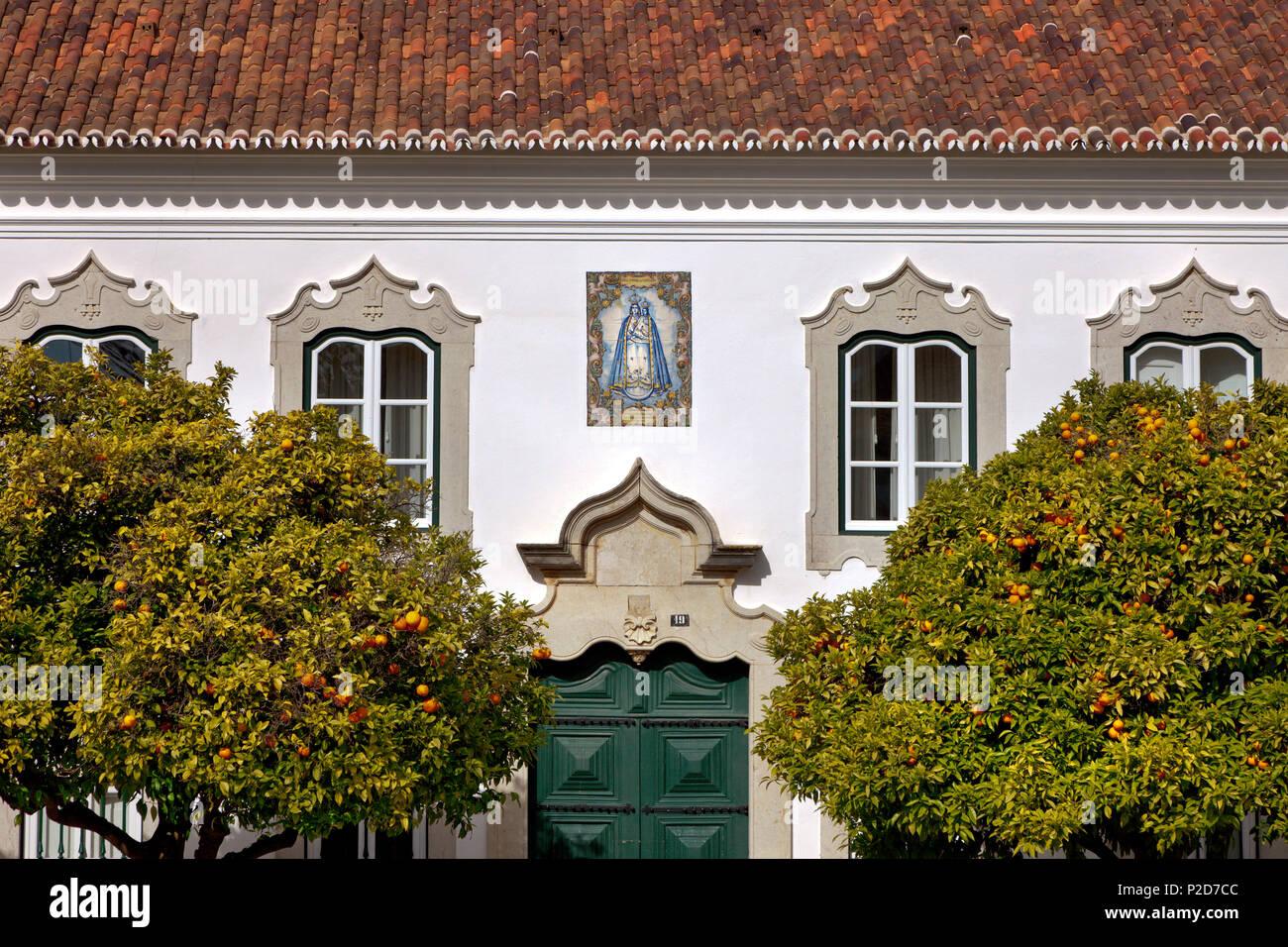 Alberi di arancio di fronte a una casa a Largo da Sé, Faro, Algarve, PORTOGALLO Immagini Stock