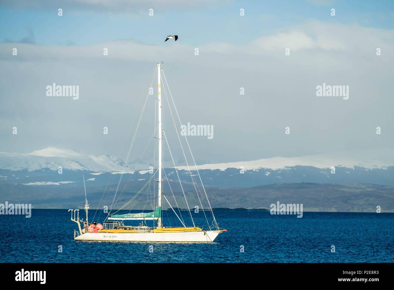 Una barca a vela attraversa il Canale di Beagle vicino a Ushuaia. La vela è popolare in questa parte del mondo dove le isole offrono paesaggi mozzafiato. Foto Stock