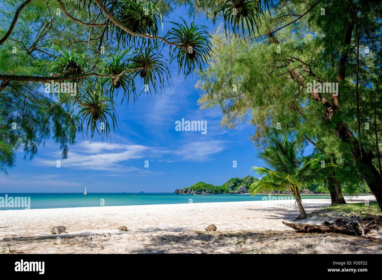 Thailandia, provincia di Satun, Tarutao National Marine Park, Ko Tarutao island, Ao Pante Malacca beach Immagini Stock