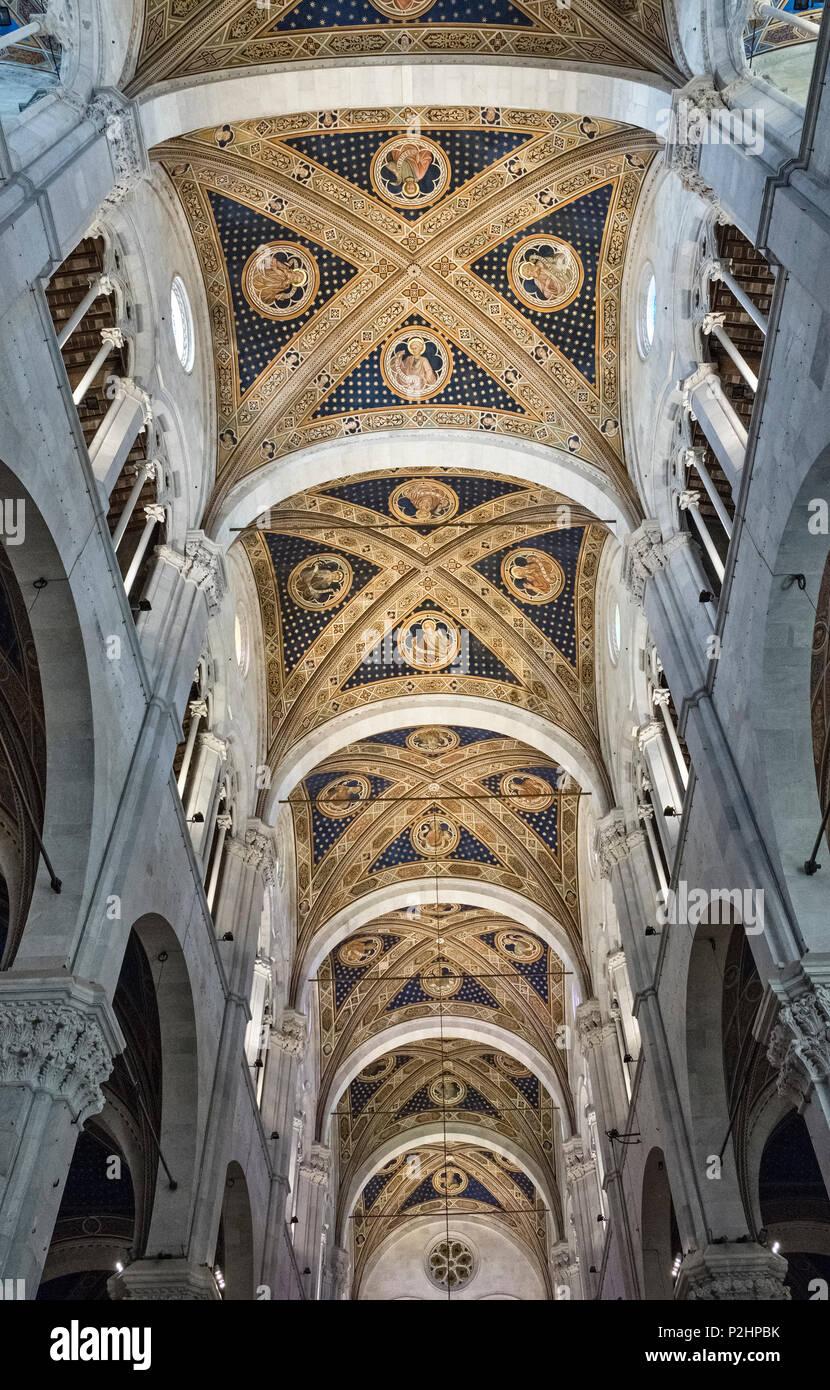 Lucca Toscana Italia I Soffitti Affrescati E Lo Scavalcamento In 14c Interno Del Duomo Cattedrale Conosciuta Come La Cattedrale Di San Martino Foto Stock Alamy
