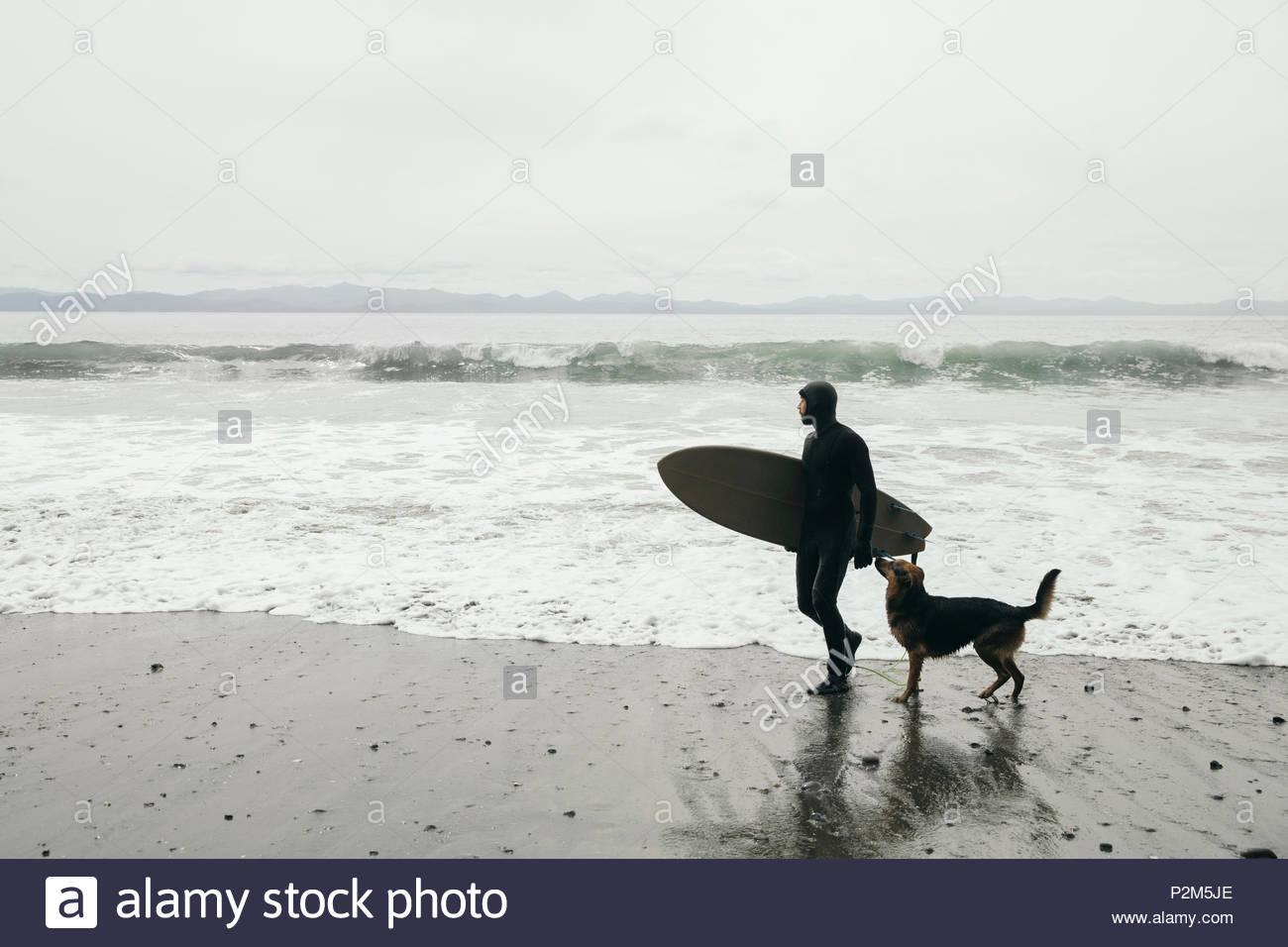 Surfista maschio con il cane che trasportano le tavole da surf sulla spiaggia di robusti Immagini Stock