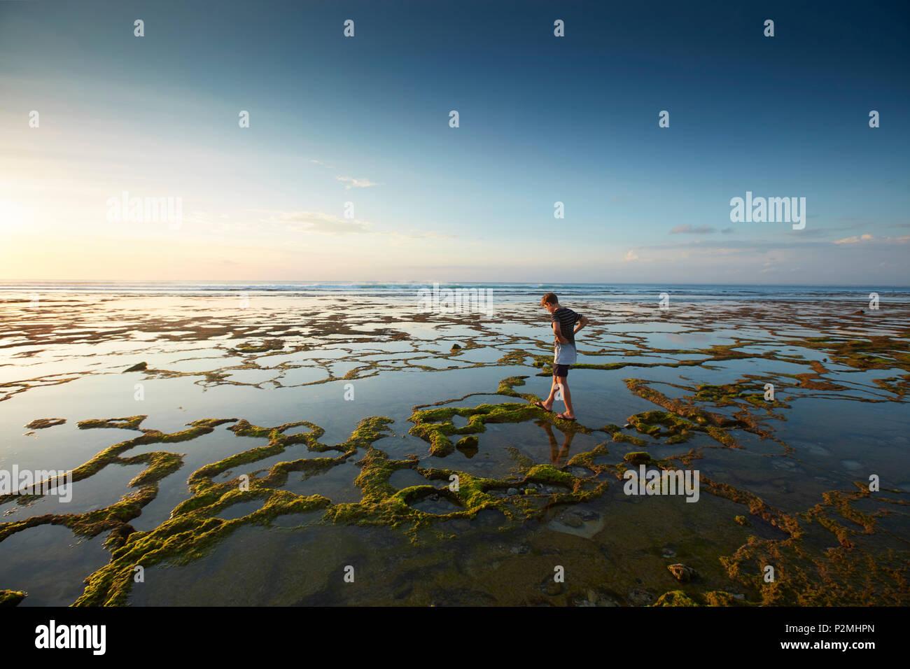 Stand a bassa marea, Balangan, Bali, Indonesia Immagini Stock
