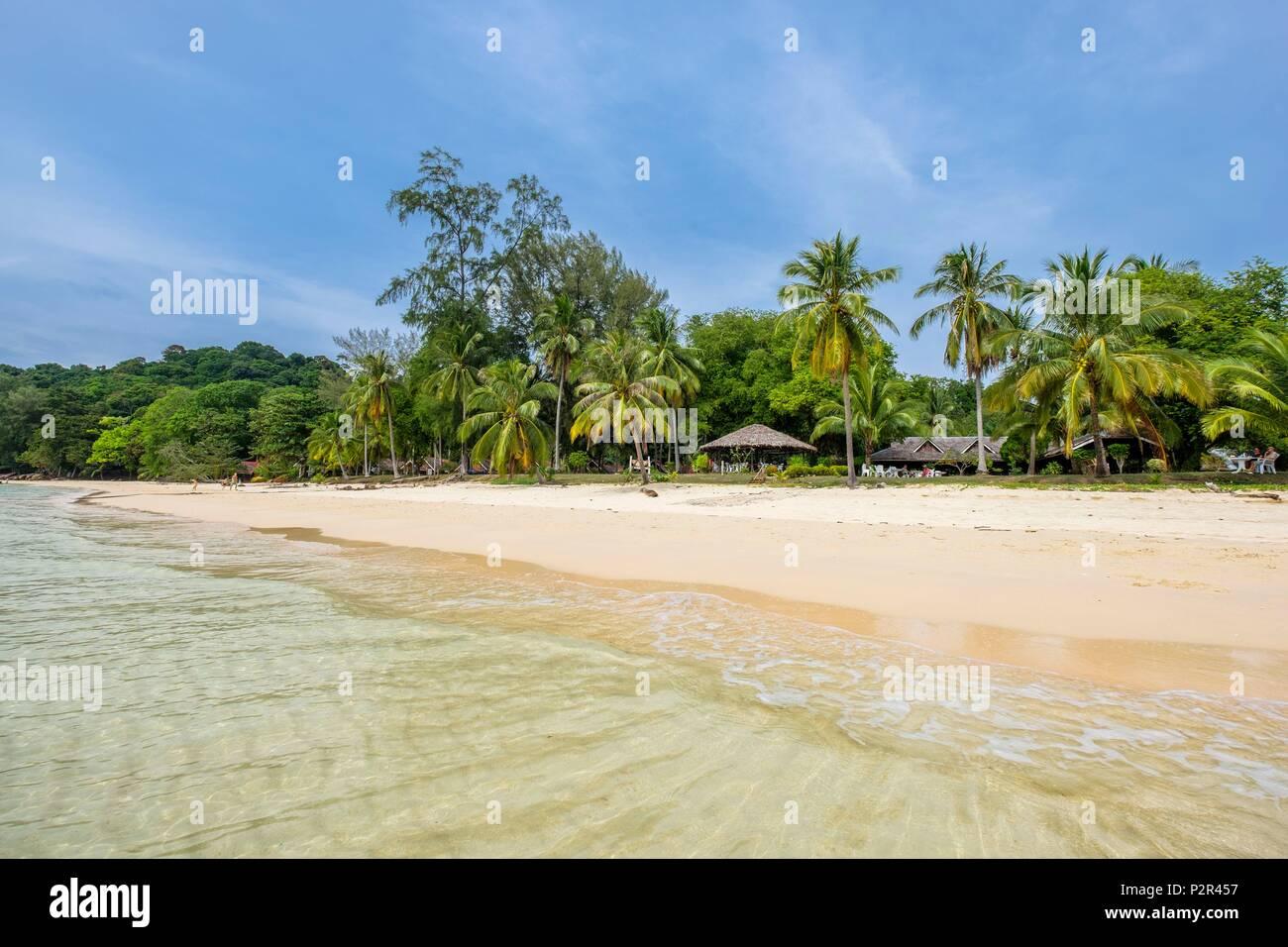 Thailandia, provincia di Satun, Mu Ko Phetra il Parco Marino Nazionale, Ko Bulon Leh island, la grande spiaggia di sabbia bianca a est dell isola e Pansand Resort sotto gli alberi di noce di cocco Immagini Stock