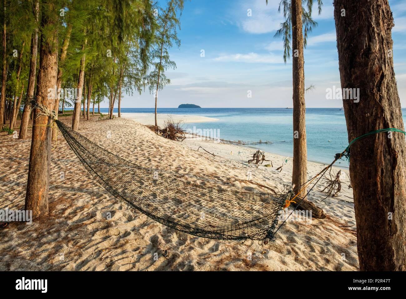 Thailandia, provincia di Satun, Tarutao National Marine Park, Ko Adang isola, Laem figlio spiaggia fiancheggiato da Casuarinas Immagini Stock