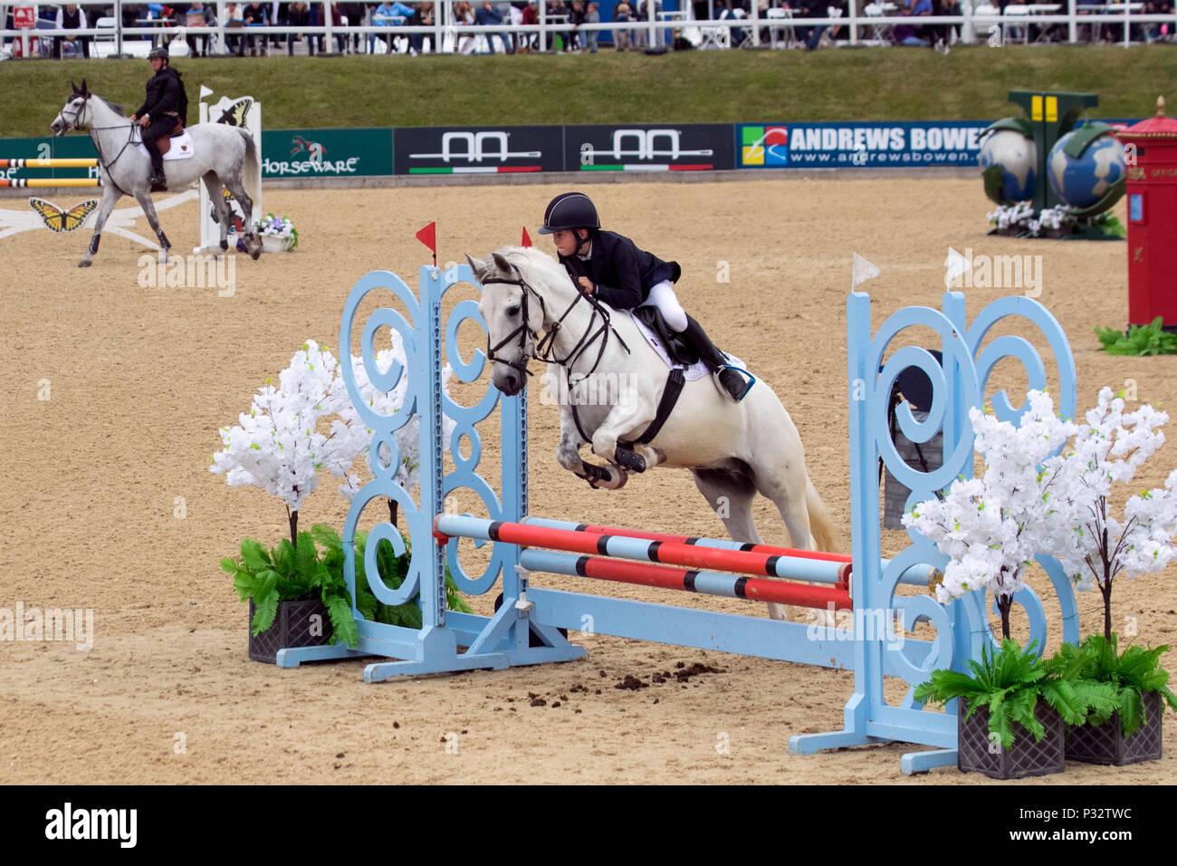 Jack Hewitt Bolesworth, Cheshire. 17/06/2018. Childens show jumping in gara la Invitational Mini relè principali. Credito/MediaWorldImages AlamyLiveNews. Immagini Stock