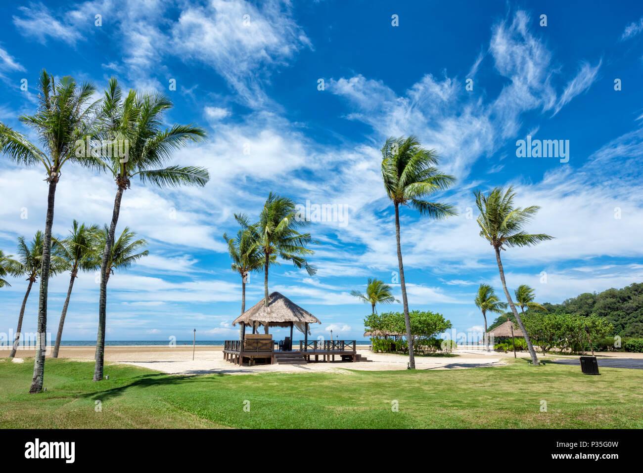Il lussureggiante Parco di Shangri La Rasa Ria Hotel e Resort in Kota Kinabalu, Borneo Malaysia Immagini Stock